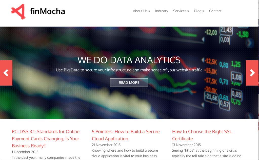 finMocha website